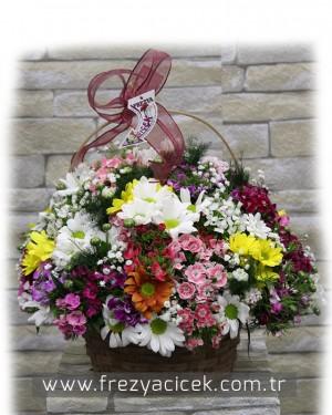 Sepette Baharın Kır Çiçekleri