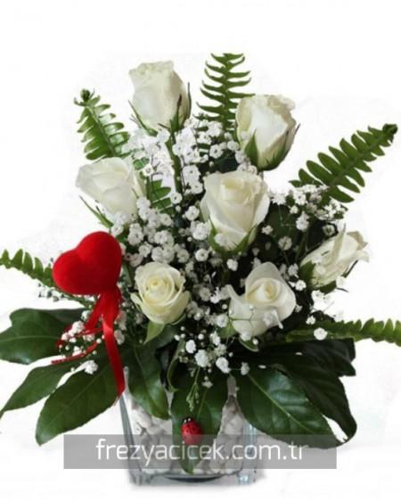 Kar Beyaz Güller